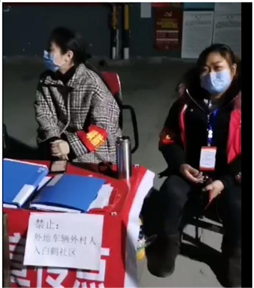 龙凤镇女干部:战疫一线的巾帼风采